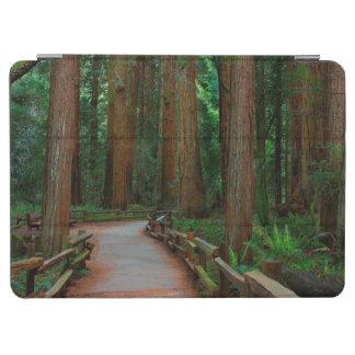 米国、カリフォルニア。 Muirのレッドウッド間の道 iPad Air カバー