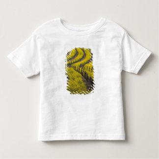 米国、カリフォルニア、Napa Valley、Los Carneros Ava. トドラーTシャツ