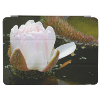 米国、カンザスの水Lillyの淡いピンクに咲くこと iPad Air カバー