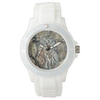 米国、カンザス。 アメリカフクロウ(溝彫りVaria) 腕時計