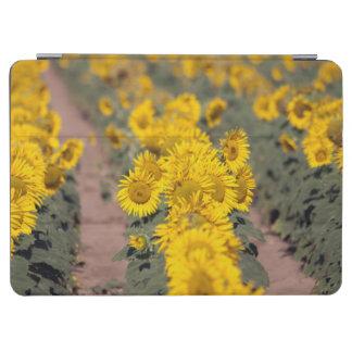 米国、カンザス。 ヒマワリ(Helianthus Annuus) iPad Air カバー