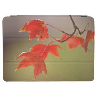 米国、カンザス、早い秋の赤い葉 iPad AIR カバー