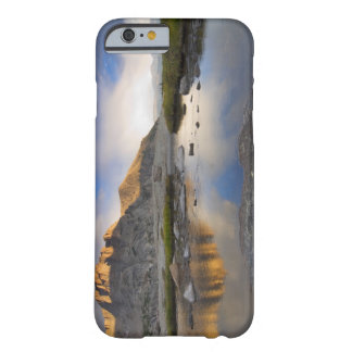 米国、コロラド州のロッキー山脈NP. BARELY THERE iPhone 6 ケース