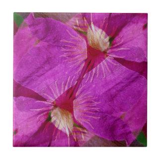 米国、コロラド州の大きい石。 クレマチスの花のモンタージュ タイル