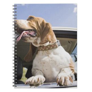 米国、コロラド州の車の窓2を通って見ている犬 ノートブック