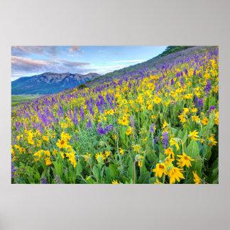 米国、コロラド州の頂点に達されたビュート。 景色 ポスター