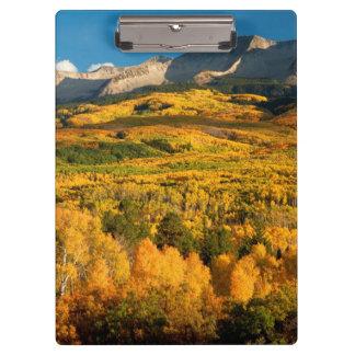 米国、コロラド州のGunnisonの国有林 クリップボード
