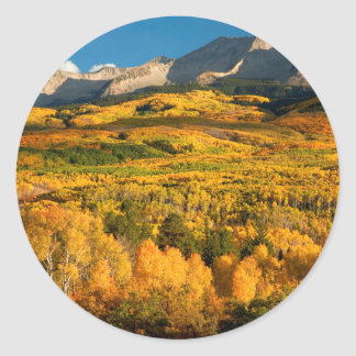 米国、コロラド州のGunnisonの国有林 ラウンドシール