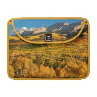 米国、コロラド州のGunnisonの国有林 MacBook Proスリーブ