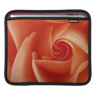 米国、コロラド州、ラファイエット。 モモのばら色のクローズアップ iPadスリーブ