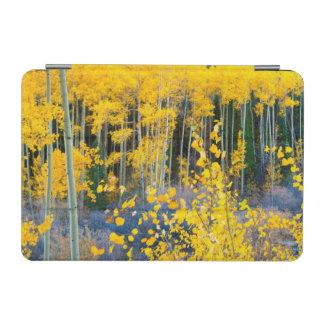 米国、コロラド州。 ロッキー山脈2の明るく黄色い《植物》アスペン iPad MINIカバー