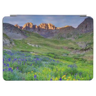 米国、コロラド州。 野生の花の日の出 iPad AIR カバー
