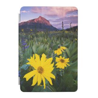 米国、コロラド州、Mt.はビュートの頂点に達しました iPad Miniカバー