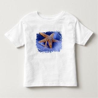 米国、サウスカロライナ、Hilton Head Island。 2 トドラーTシャツ