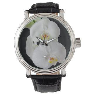 米国、ジョージアのサバンナ、蘭の集り 腕時計