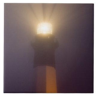 米国; ジョージア; サバンナ。  Tybeeの島の灯台 タイル