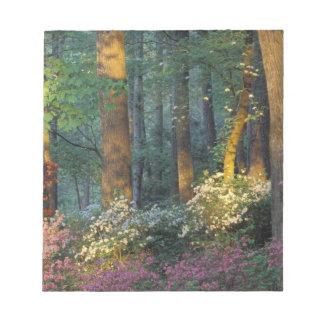 米国、ジョージア、Callawayは、ツツジの森林庭いじりをします ノートパッド