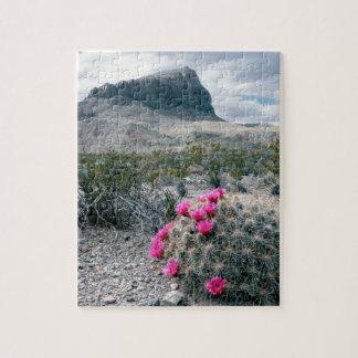 米国、テキサス州のビッグ・ベンド国立公園。 咲くこと ジグソーパズル