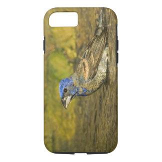 米国、テキサス州のリオ・グランデ川の谷。 男性の青 iPhone 8/7ケース