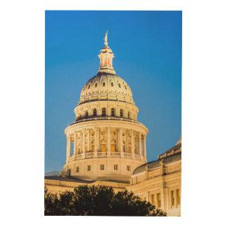 米国、テキサス州、オースティン。 国会議事堂の建物(1888年) 2 ウッドウォールアート