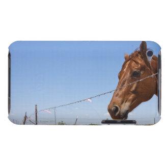 米国、テキサス州、Chillicotheの馬は側立ちます Case-Mate iPod Touch ケース