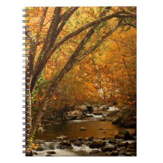 米国、テネシー州。 急ぐ山の入り江3 ノートブック
