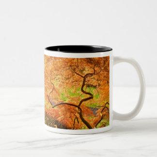 米国、デラウェア州、ウィルミントン。 日本のなかえで ツートーンマグカップ