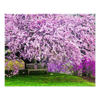 米国、デラウェア州、ウィルミントン。 木のベンチ フォトプリント