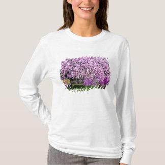 米国、デラウェア州、ウィルミントン。 木のベンチ Tシャツ