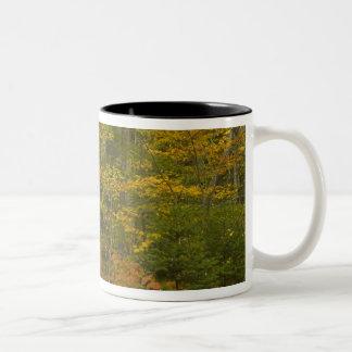 米国、ニューハンプシャー、Livermoreの白い山 ツートーンマグカップ