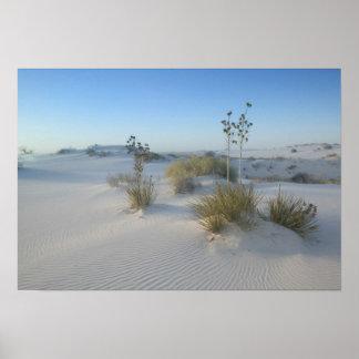 米国、ニューメキシコの白人の砂の国民2 ポスター