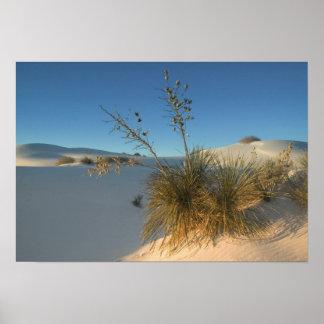 米国、ニューメキシコの白人の砂の国民3 ポスター