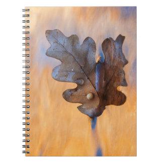米国、ニューメキシコ。 流れのカシの葉 ノートブック