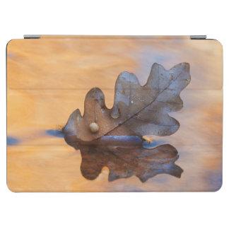 米国、ニューメキシコ。 流れのカシの葉 iPad AIR カバー