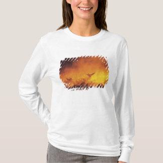 米国、ニューメキシコ、Bosque delアパッシュNational 7 Tシャツ