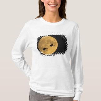 米国、ニューメキシコ、Bosque delアパッシュNational Tシャツ