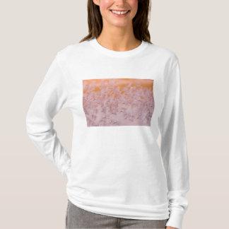 米国、ニューヨークのニッカーソンのビーチ、ポイント眺望 Tシャツ