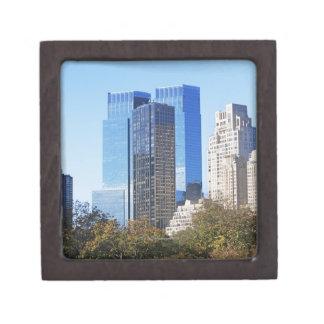 米国、ニューヨークシティ、スカイラインのセントラル・パーク ギフトボックス