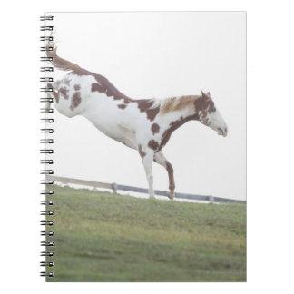 米国、ニューヨーク州、ハドソンの跳んでいる馬 ノートブック