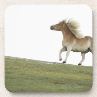 米国、ニューヨーク州、ハドソンの2の馬のランニング コースター