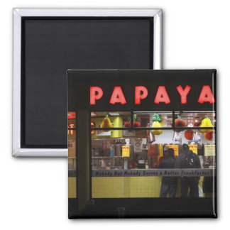 米国、ニューヨーク。 灰色のパパイヤ: 窓 マグネット