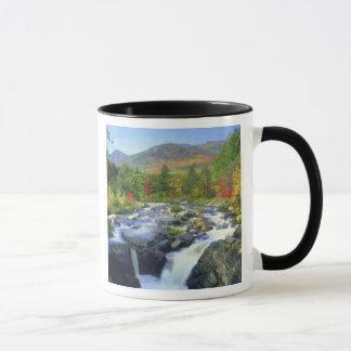 米国、ニューヨーク。 Adirondackの滝 マグカップ