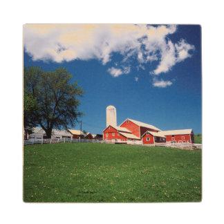 米国、ニューヨーク、Sharon Springsの農場 ウッドコースター