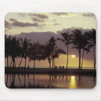 米国、ハワイの大きい島、カップル、ヤシの木 マウスパッド