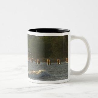米国、ハワイ、カウアイ島の南西海岸、の近くで ツートーンマグカップ