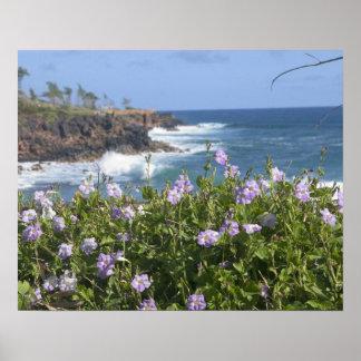 米国、ハワイ、カウアイ島、北西Kapaaの近くで ポスター