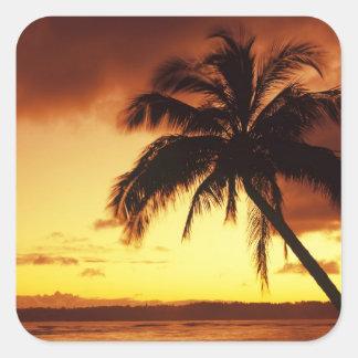 米国、ハワイ、マウイのaのカラフルな日没 スクエアシール