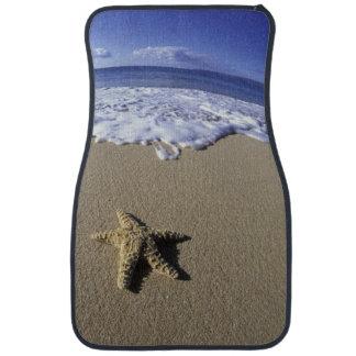 米国、ハワイ、マウイのMakenaのビーチ、ヒトデ カーマット
