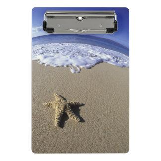 米国、ハワイ、マウイのMakenaのビーチ、ヒトデ ミニクリップボード