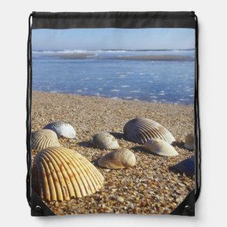 米国、フロリダの沿岸海の貝 ナップサック